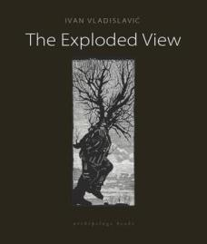 The Exploded View Ivan Vladislavic