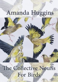 The Collective Noun for Birds Amanda Huggins